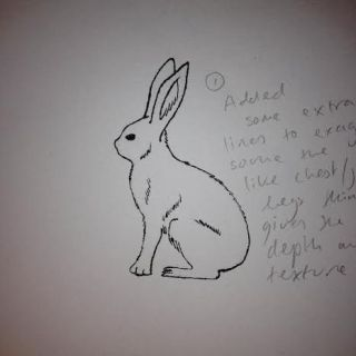 hare finished drawing